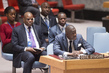 Security Council Extends Arms Embargo in Côte d'Ivoire 2.9274082