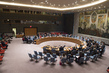 Security Council Extends Arms Embargo on Côte d'Ivoire