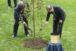 Tree-planting Ceremony Commemorating End of WWII and Founding of UN 4.417043