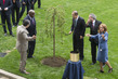 Tree-planting Ceremony Commemorating End of WWII and Founding of UN 4.4142065
