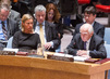 Security Council Discusses Cooperation Between UN and Regional Organizations 4.1949515