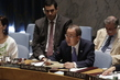 Security Council Debates Human Cost of Illicit Small Arms and Light Weapons 4.1957264