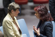 Security Council Debates Human Cost of Illicit Small Arms and Light Weapons 4.1984577
