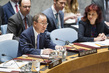 Security Council Debates Human Cost of Illicit Small Arms and Light Weapons 4.1949515