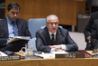 Security Council Considers Situation Concerning Iraq 1.0