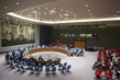 Security Council Considers Situation in South Sudan 0.059920337