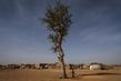 Daily Life at the IDPs Village in Mopti, Mali 3.1333115