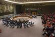 Security Council Considers Middle East Situation, Including Palestinian Question 0.059920337