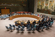 Security Council Adopts Resolution on Tackling Illicit Trade of Small Arms