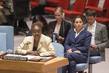 Security Council Considers Situation in Syria 4.1946664