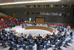 Security Council Considers Situation in Syria 1.0