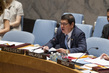 Security Council Extends Mandate of Mali Mission 1.0546769