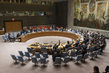 Security Council Extends Mandate of Mali Mission 1.0
