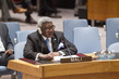 Security Council Extends Mandate of Mali Mission 1.217836