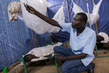 Cholera Treatment and Vaccination Campaign at UNMISS PoC, Juba 4.480654