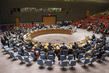 Security Council Considers Situation Concerning Iraq 1.3716774