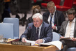 Security Council Considers Situation in Syria 1.0223243