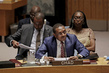 Security Council Considers Threats from, Response to Terrorist Group Boko Haram 1.0