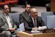 Security Council Discusses Situation in Yemen