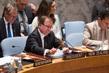 Security Council Extends Iraq Mission for One Year 0.96017414