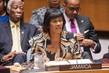 Security Council Debates Challenges Facing Small Island Developing States