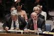 Security Council Debates Challenges Facing Small Island Developing States 0.03874384