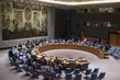 Security Council Debates Regional Organizations and Global Security 4.1758814