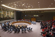 Security Council Considers Middle East Situation, Including Palestinian Question 4.1758814