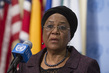 Security Council Issues Press Statement on Mali 0.6462571