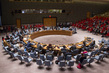 Security Council Considers Situation in Yemen 4.1758814