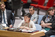 Security Council Discusses Security Sector Reform 1.0
