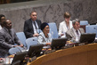 Security Council Extends Lebanon Mission 4.17334