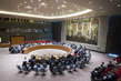Security Council Discusses Situation in Syria 0.008492971