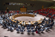 Security Council Discusses Situation in Syria 1.0