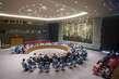 Security Council Considers Situation in Guinea-Bissau 0.0067943768