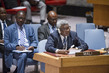 Security Council Considers Situation in Mali 4.183671