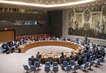 Security Council Considers Situation Concerning Democratic Republic of Congo 4.183671