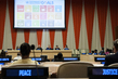 Briefing on Agenda 2030 for Sustainable Development: Advocacy for Implementation and Global Partnership 0.46464688