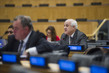 Meeting of Committee on Rights of Palestinian People 0.6012442