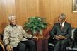 Secretary-General Meets with President of South Africa 4.162429