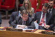 Security Council Briefed by Outgoing Chairs of Subsidiary Bodies 0.14781299
