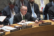 Security Council Discusses Tensions Between Iraq and Turkey 1.2426068