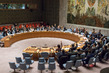 Security Council Renews Decision on Aid Delivery to Syria 1.0626625