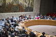 Security Council Considers Non-Proliferation of Weapons of Mass Destruction 0.95524275