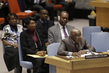 Security Council Considers Situation Concerning Democratic Republic of Congo 4.171394