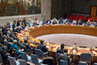 Security Council Considers Situation in Côte d'Ivoire 0.5337858