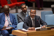 Security Council Meeting on Sudan and South Sudan 4.171264