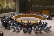 Security Council Meeting on Sudan and South Sudan 0.4680481