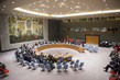 Security Council Meeting on Mission to Africa 4.171411