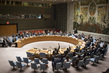 Security Council Extends Mandate of Sudan Sanctions Monitoring Panel